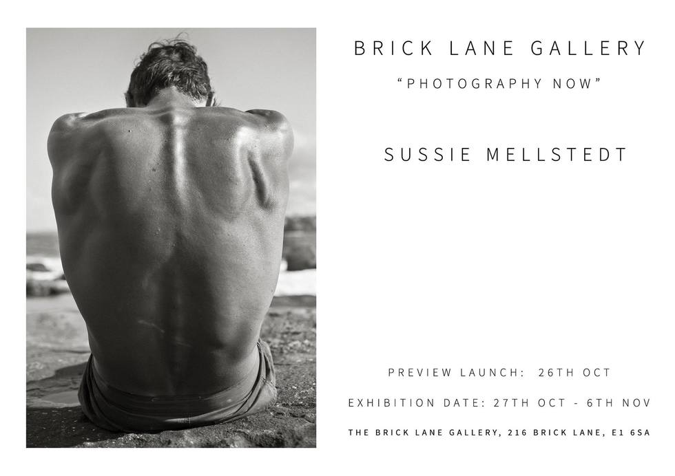 exhibition, london, artist, sussie mellstedt, sussie mellstedt photography